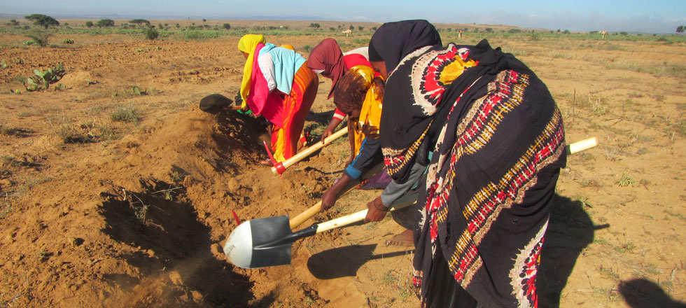 Rehabilitation of Soil Bands in Gugux Village